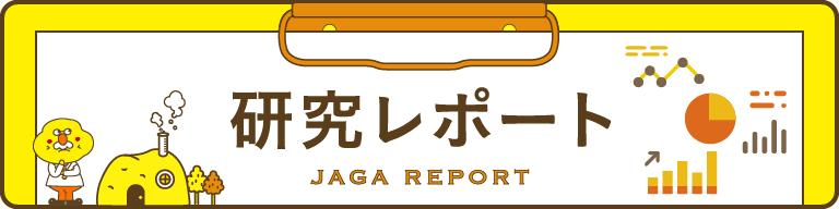 研究レポート